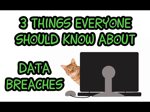3 Things Everyone Should Know About Data Breaches
