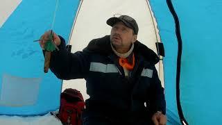Рыбалка на Петровской Мотоблк снегоход не подвёл