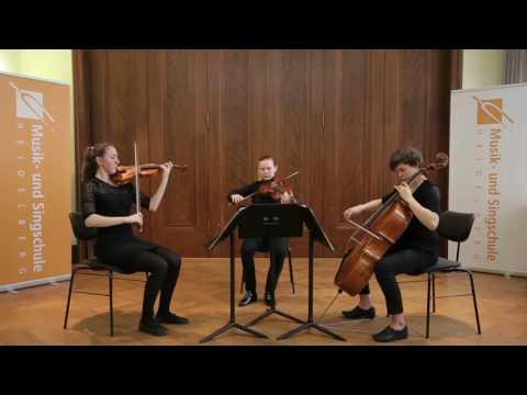 Ludwig van Beethoven - Trio c-Moll op9/3