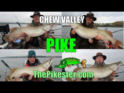 Chew Valley Pike Fishing October / November 2014