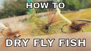 Dry Fly Fishing | H๐w To with Tom Rosenbauer