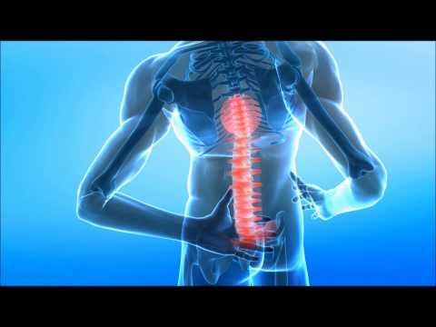 hqdefault - L'ostéopathie : Correspondance vertèbre/organe