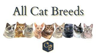 All Cat Breeds