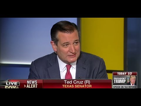 Ted Cruz: If You Want Reagan-Era Growth, You Do Reagan-Style Tax Cuts