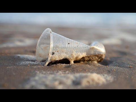 Как бороться с загрязнением океана