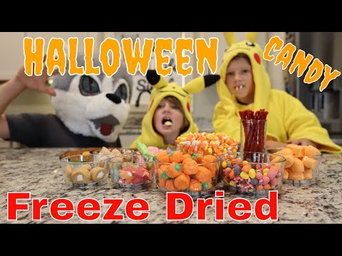 Halloween Candy Freeze Dried// Candy Corn, Laffy Taffy, Twizzlers, Bit O Honey, Sweet Tarts