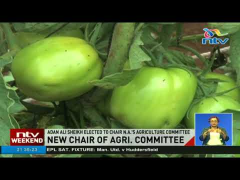 Adan Ali is the new chair of parliament's agriculture committee