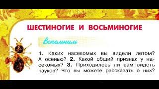 """Окружающий мир 2 класс ч.1, Перспектива, с.90-93, тема урока """"Шестиногие и восьминогие"""""""