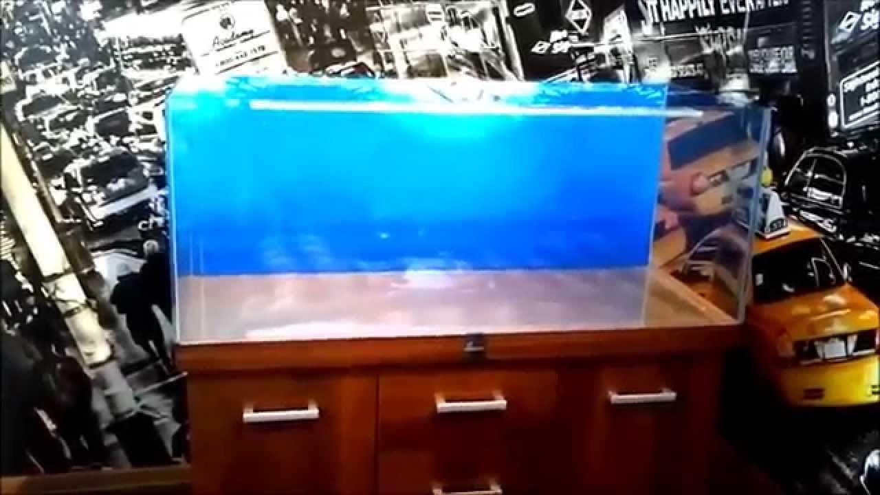 zak u0142adanie akwarium morskiego
