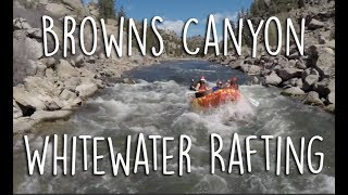Browns Canyon Whitewater Rafting | American Adventure Expeditions