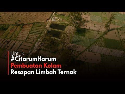 Kolam Resapan Limbah Ternak Sapi #CitarumHarum Mp3