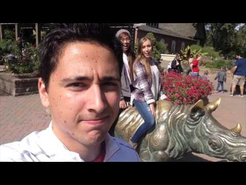 Day at the Zoo (10-3-15)