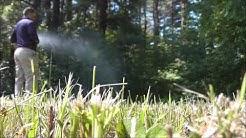 Burgess Pest Management- Massachusetts' Best Tick & Mosquito Control