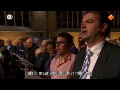 Als ik maar weet, Nederland Zingt  Hulst