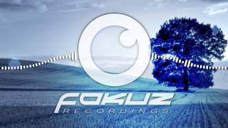 rowpieces new stage of life fokuz recordings