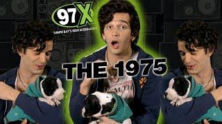 #MattyHealy (#The1975) & a puppy answer questions backstage at #97XNBT