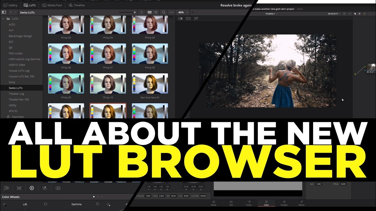 Davinci Resolve 15 Basics - All About The New LUT Browser