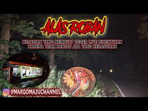Download LIVE MISTERI    MENGUNGKAP MITOS ALAS ROBAN (JAWA TENGAH)