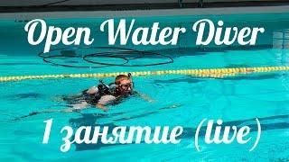 PADI Open water diver (первые уроки дайвинга OWD: 1 занятие)