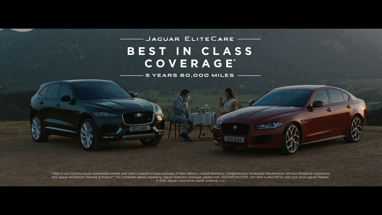 Jaguar Guide To Manners   Peace Of Mind