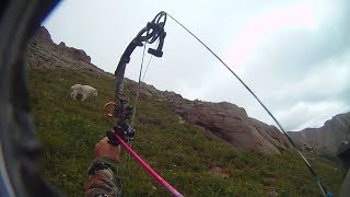 Colorado Archery Mountain Goat Stalk and kill.wmv