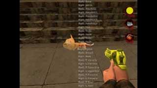 "Postal 2 : New Weapon Mod ""AMN"" (beta)"