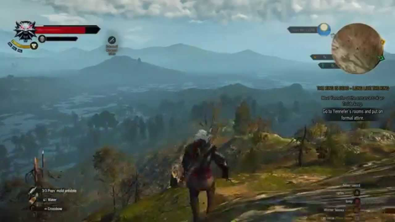 The Witcher 3 Out Of Bounds Glitch And Reaching Velen S Giant Tree Youtube