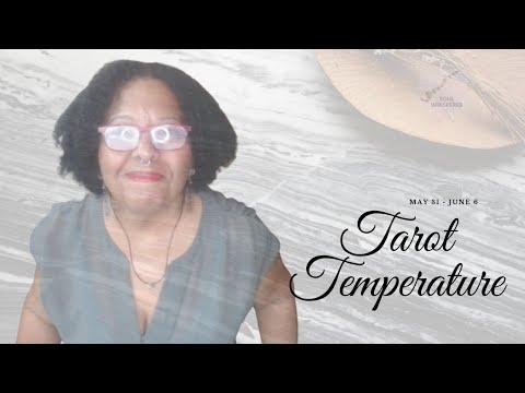?️ TAROT TEMP ?️: The Universe Is Speaking Loudly. Listen.