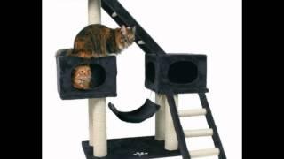 домик для кошки купить авито