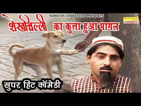 शेख चिल्ली का कुत्ता हुआ पागल Shekh Chilli Ka Kutta Hua Pagal | Shekh Chilli Superhit  Maina Comedy