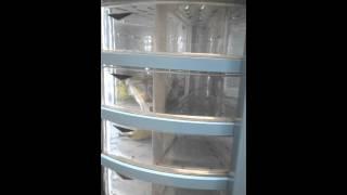 Automat Fresh food II
