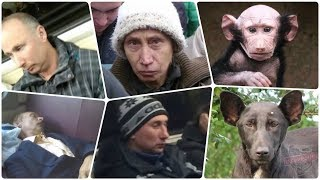 Путин гуляет Инкогнито. Новости в 21.00 НАРОДОВЛАСТИЕ