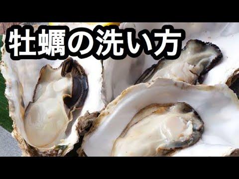 牡蠣 洗い 方 牡蠣の正しい洗い方3選!調理の方法で洗い方を変えてみましょう