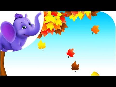 Fall--Leaves