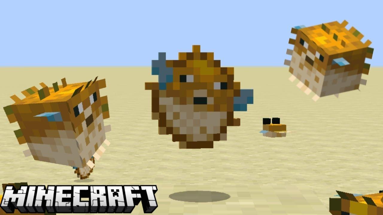 Pufferfish - YouTube