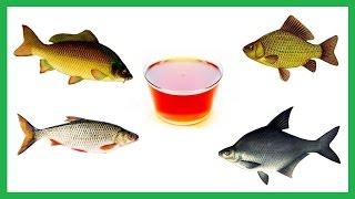 Ванільний Діп для Риболовлі на основі цукрового сиропу. Рибалка. Fishing.