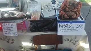 Рынок морепродуктов во Владивостоке. Обзор и цены.