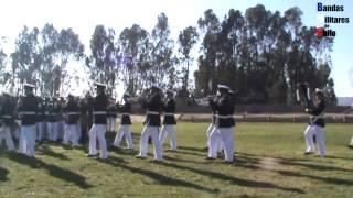 ARMADA DE CHILE: Aniversario 197 Cuerpo Infantería de Marina