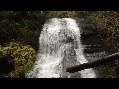 Beach Estates Park Waterfall - 1 Hour Relaxing Nature Sounds