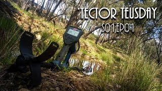 Tector Tuesdays S01Ep01 -  In the Goldfields with the Comic Chef