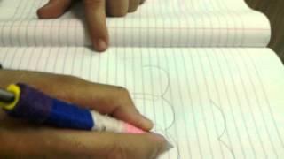 Female genital system drawing