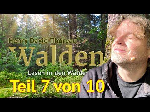 Henry David Thoreau: Walden – Teil 7 von 10 – Das Lesen in den Wäldern