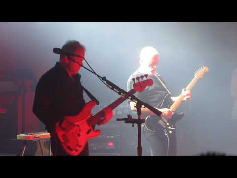 David Gilmour - Money (Pink Floyd) Live @ Royal Albert Hall indir