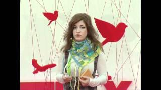 TEDxVorobyovy-Gory - Kristina Elisarova - Dream: Art of Visualize