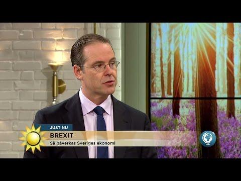 Så påverkas Sverige av Brexit - Anders Borg svarar - Nyhetsmorgon (TV4)