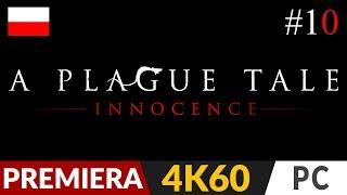 A Plague Tale: Innocence PL  #10 (odc.10)  X - Ścieżka wśród róż   Gameplay po polsku