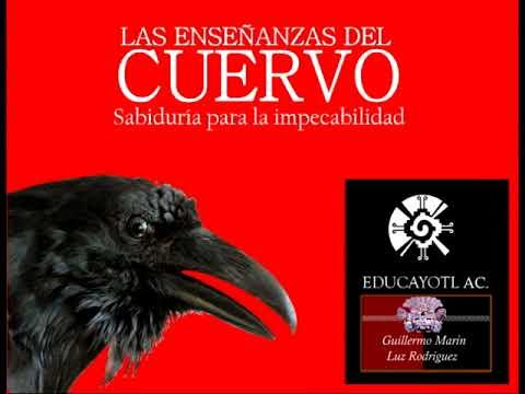 303.- 9 Las Enseñanzas del Cuervo. Audio