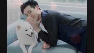 愛情教會我們的事 - 周興哲 What love has taught us - Eric (with pinyin) lyric video