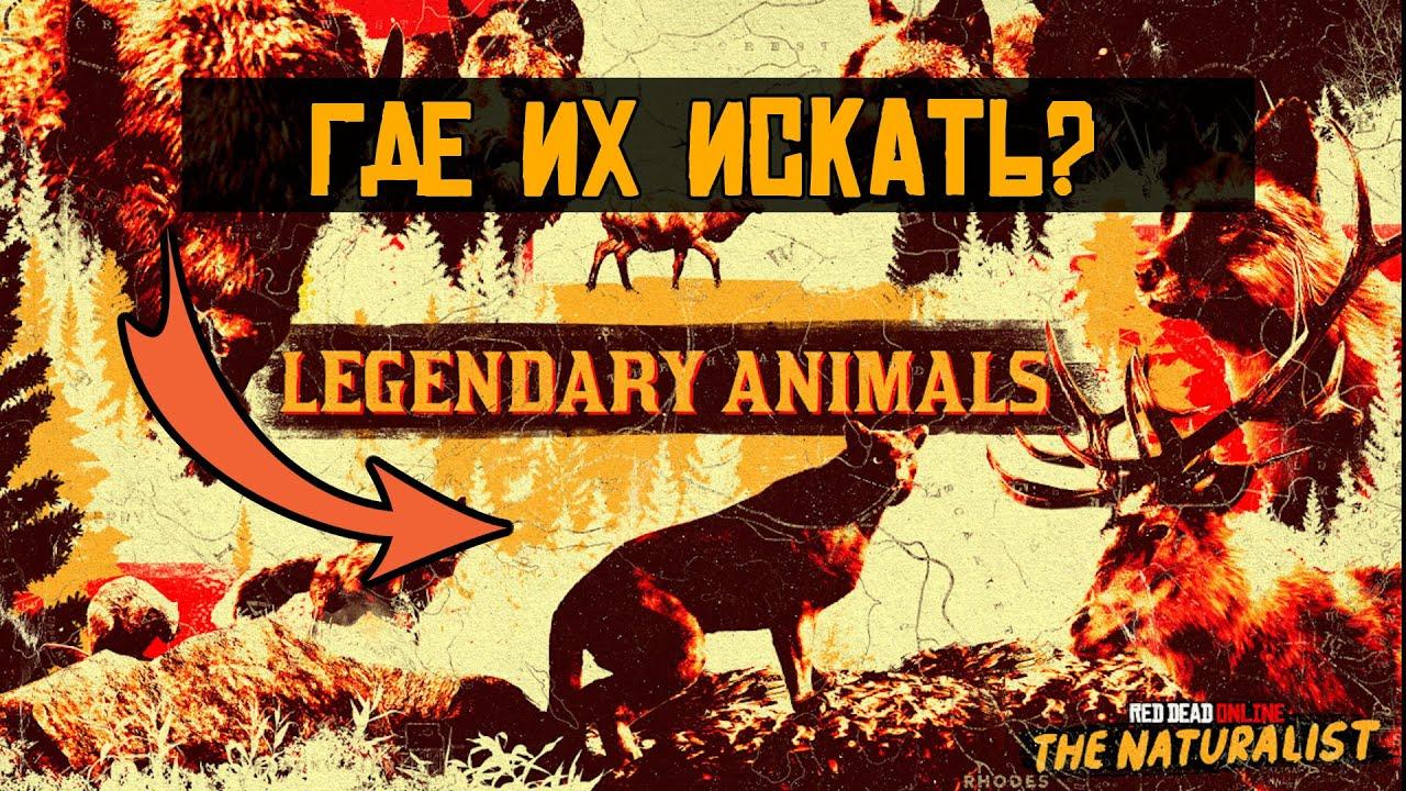 Легендарные животные в red dead online: где их искать?