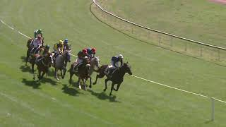 Vidéo de la course PMU PRIX DE FRANCFORT